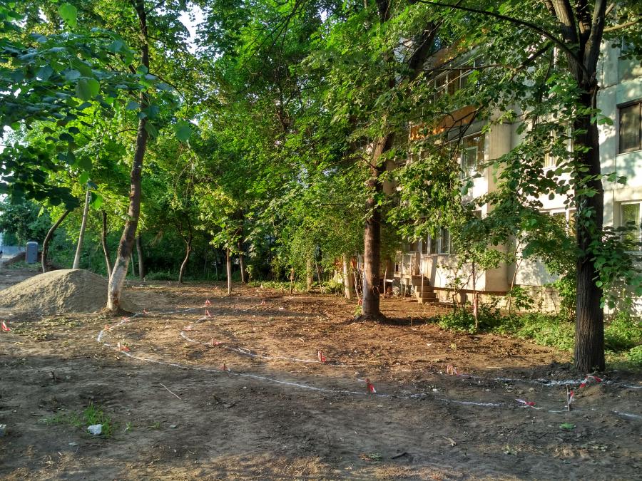 Zeci de copaci, tăiaţi ilegal? Restructurare urbană cu scandal, la E6